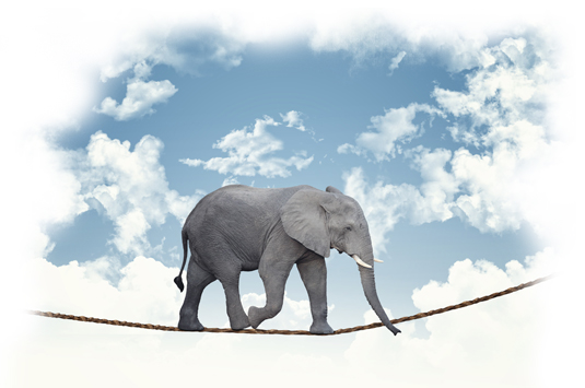 Brave elephant in the clouds